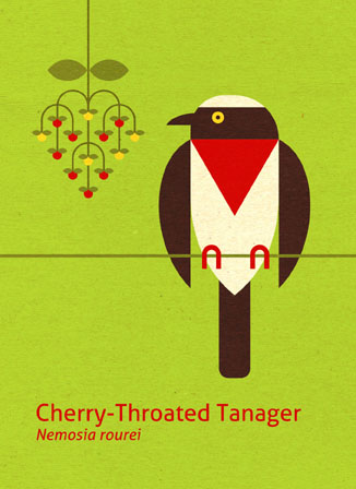 Scott Partridge - Illustration - Cherry-Throated Tanager