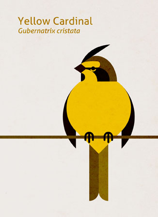 Scott Partridge - Illustration - Yellow Cardinal