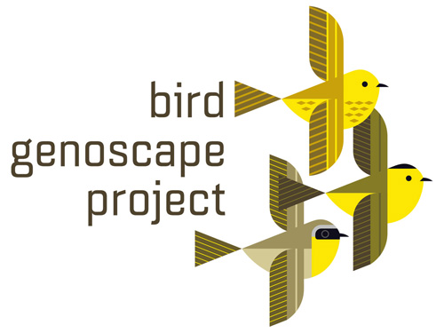 scott partridge - bird genoscape project - bird genoscape project logo