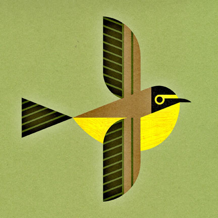scott partridge - bird genoscape project - kentucky warbler