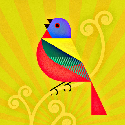 scott partridge - bird genoscape project - painted bunting