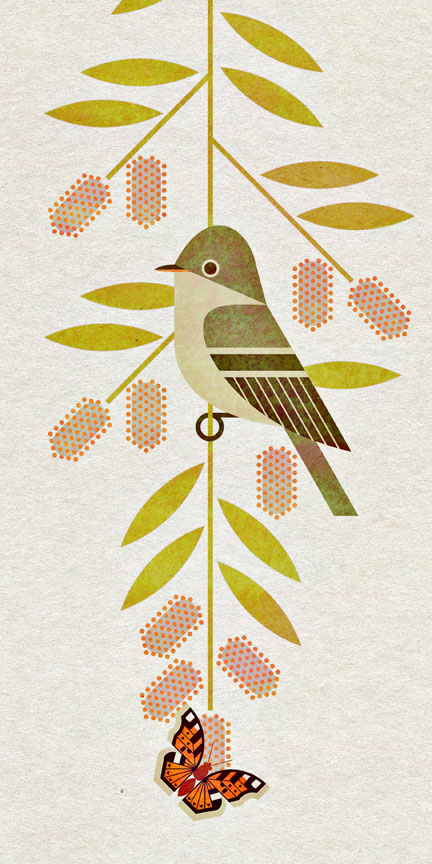 scott partridge - bird genoscape project - willow flycatcher