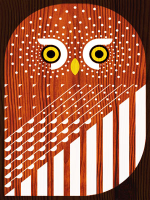 scott partridge - art o mat - northern pygmy owl